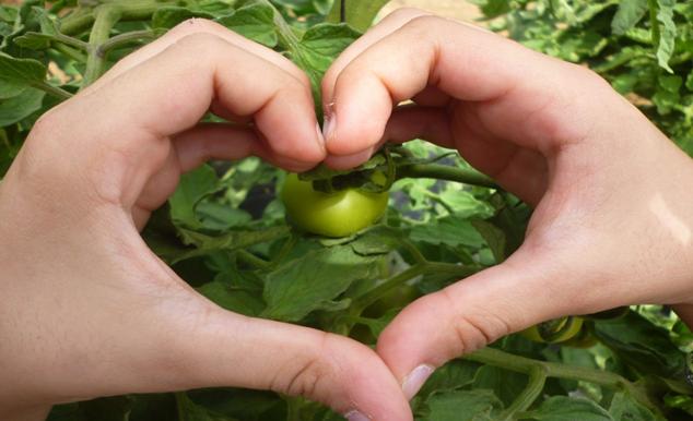 Alimentation et ressources naturelles