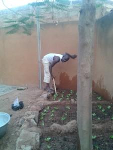 jardin potager familial, un hobby