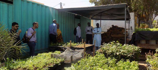 Vizita de studiu în Senegal, în cadrul proiectului EAThink2015 – Romania