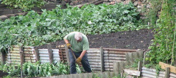 Rencontre avec un agriculteur sur le circuit-court