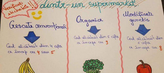Elevii Școlii Superioare Comerciale N. Kretzulescu ne dau sfaturi pentru o alimentație sănătoasă