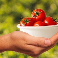 D' où vient la nourriture que nous mangeons ?