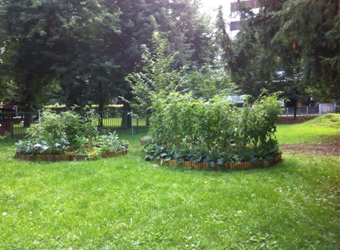 Iskali smo rešitve pri načrtovanju šolskih vrtov
