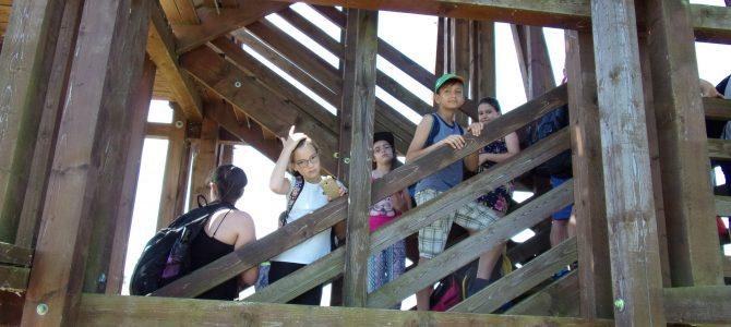 Diákok gondolatai a kirándulásról a Hortobágyi Halgazdaságba (3. rész)