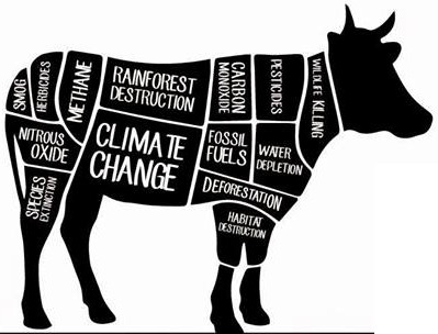 environmental effects of dairy farming in Concentrated animal feeding operations and their impact on communities  environmental health effects  meat and dairy products now are produced on large farms.