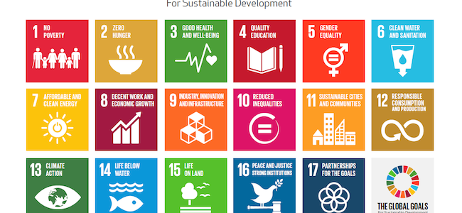Sustainable Development Goals: priorities for a global future