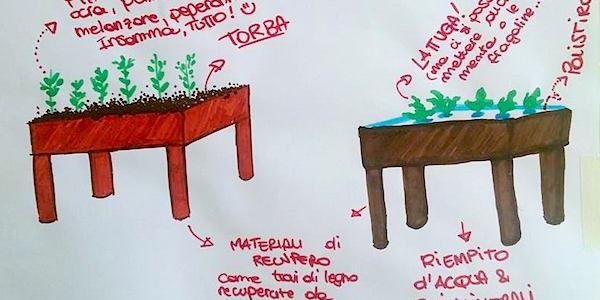 Microjardin: coltivare ovunque senza terra