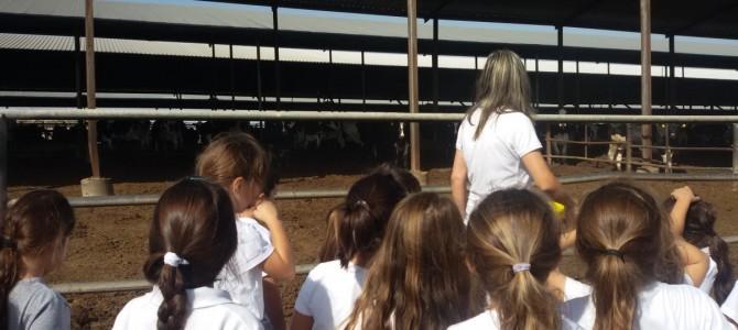 Οι μαθητές της Α' τάξης του 4ου Δημοτικού Λακατάμειας επισκέπτηκαν φάρμα εκτροφής αγελάδων στην Αθηένου