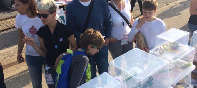 Food Cloud Exhibition on NGO festival #gledaj(u)druge in Rijeka
