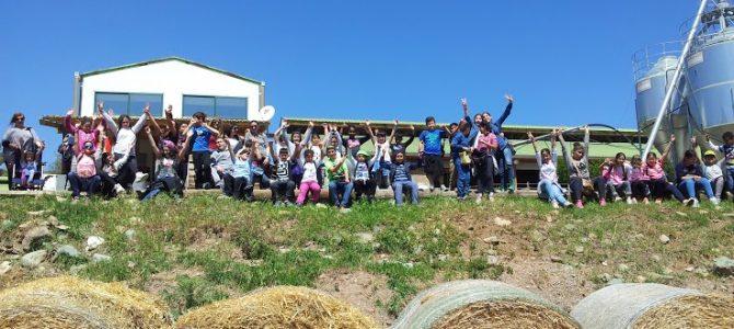 Και οι μαθητές του Γ' Δημ. Αγίου Δομετίου επισκέφτηκαν τη βιολογική φάρμα Riverland Dairy Bio Farm!
