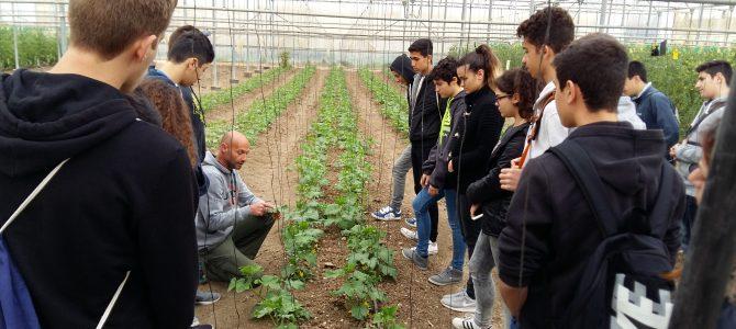 Mαθητές του Γυμνασίου Αγίου Αθανασίου επισκέφτηκαν τη βιολογική φάρμα Riverland Dairy Bio Farm στα Καμπιά