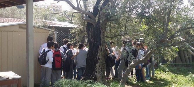 Από την εκπαιδευτική επίσκεψη μαθητών του Στ3 από το Β' Δημ. Αγίου Αθανασίου στη βιολογική φάρμα Χατζηπιερή