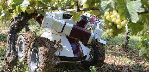 Roboti u poljoprovredi