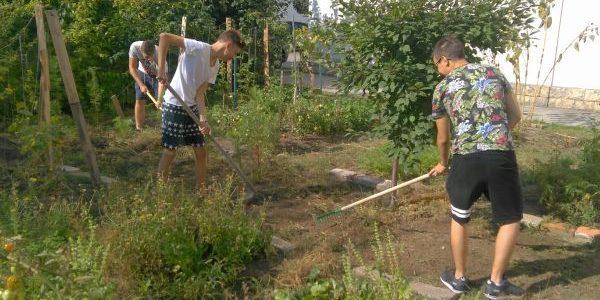 Folytatódik az iskolakert projekt a Dobosban
