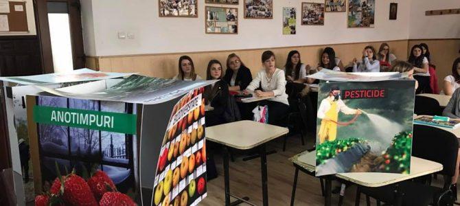 """Expoziția ,,Un nor de alimente"""" @Colegiul Economic din Buzău"""