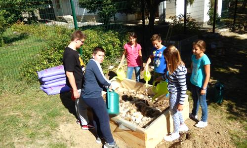 (Slovenian) Učenci OŠ Lucija vestno skrbijo za svoj ekovrt