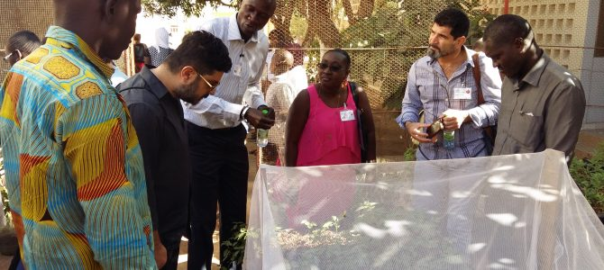 Teachers from Cyprus participate in the exchange visit to Senegal
