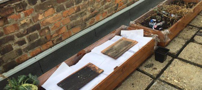 Faládák készítése a tetőkerthez (10.C módra)