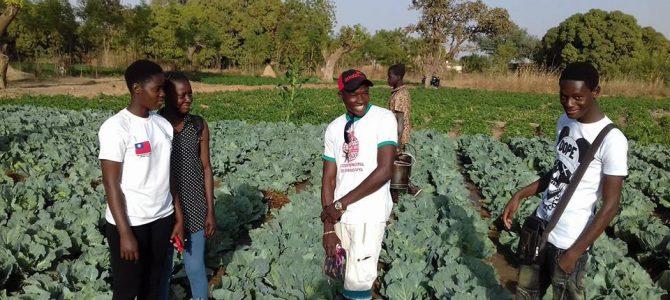 Ouahigouya: Des élèves rendent visite aux producteurs maraichers dans leurs zones  de travail