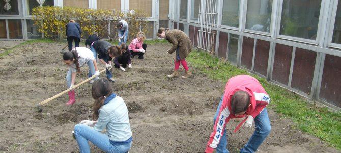 Miért jó, hogy van kertünk? (Torda Sára)