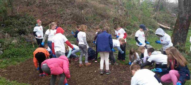 Podrška školskom vrtu – Veprinac