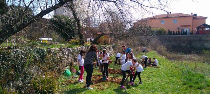 Podrška školskom vrtu – Viškovo