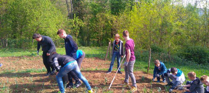 Podrška školskom vrtu – Severin na Kupi
