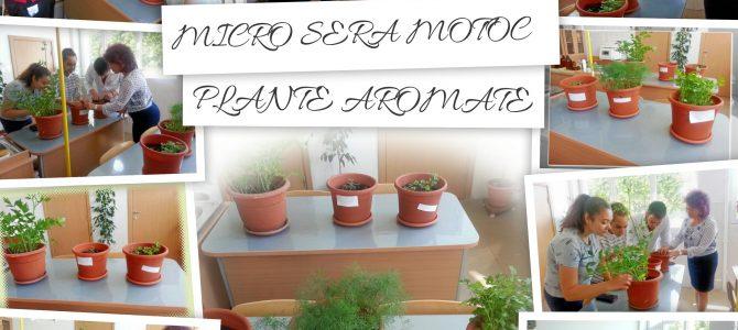 MICRO SERA MOTOC (3)