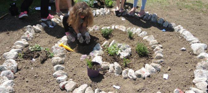 Šolski ekovrt je odlična zamisel!