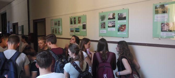 EAThink foto izložba učenika Gimnazije Pula