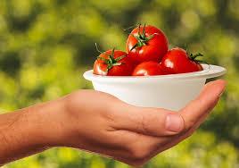 Odakle potječe hrana koju jedemo – za rad s učenicima s teškoćama u razvoju
