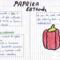 Caravana mirodeniilor – beneficii pentru sănătate
