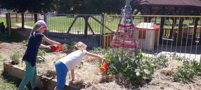 Učencem želimo zagotoviti neposreden stik z naravo