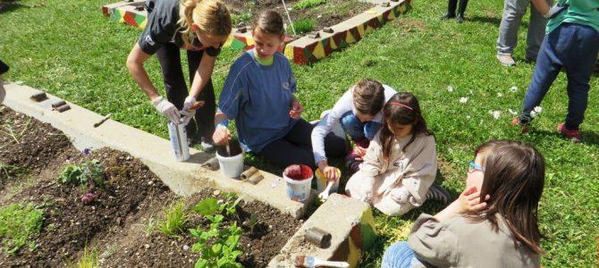 Tabor za vrtičkarje – otroci so zapisali (3)