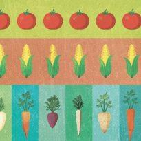 La biodiversità del cibo