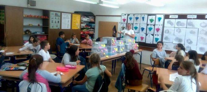 Radionica globalnog obrazovanja o posljedicama hrane u OŠ Viškovo