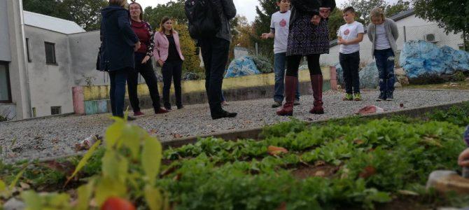 Evaluator projekta posjetio školski vrt u OŠ ČAVLE