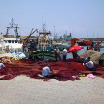 Reino das Pescas